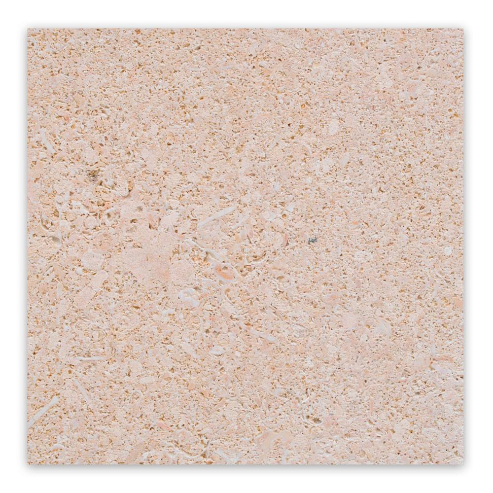 AMARILLO-fosil-corte