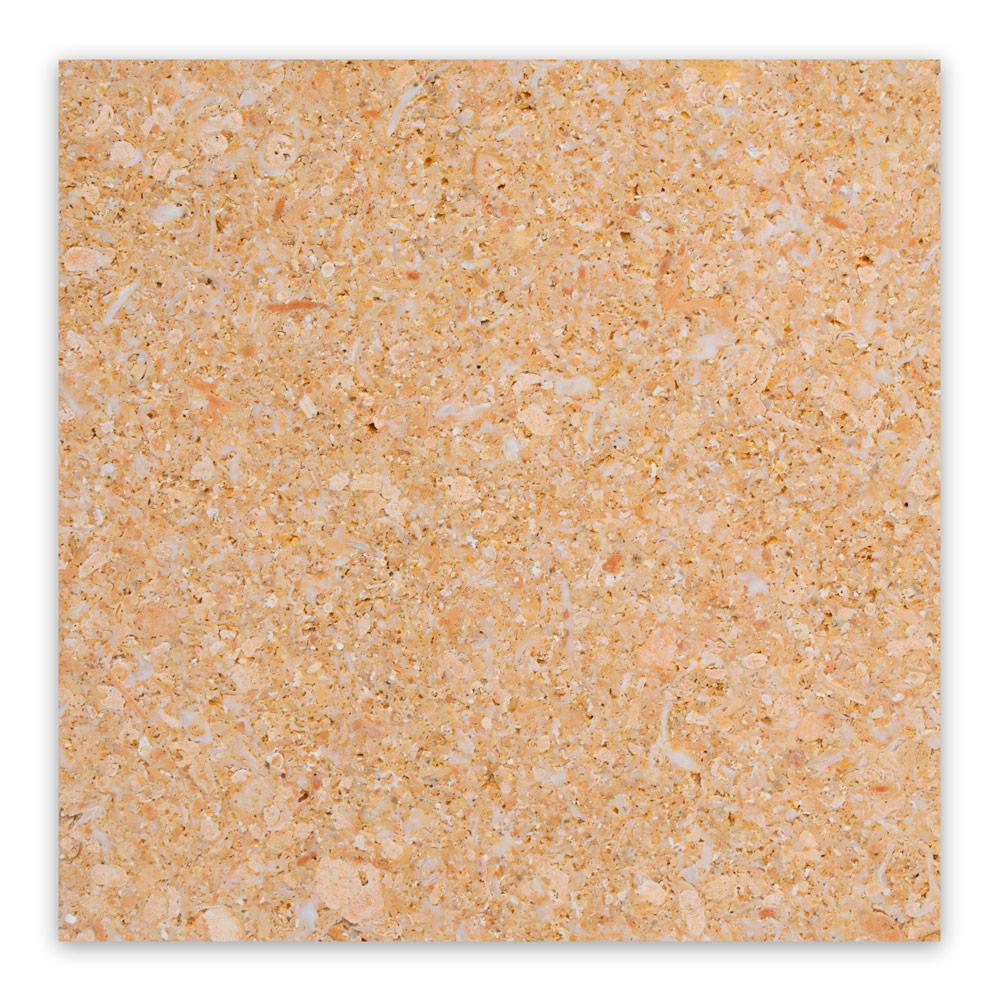 AMARILLO-fosil-pulido